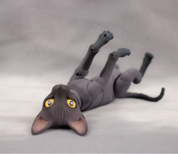 Eve Studio Project Cats
